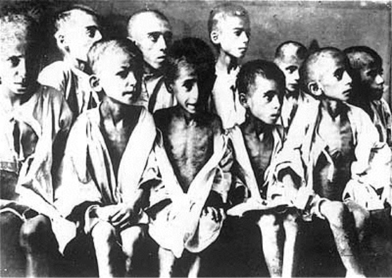 the experiences in the concentration camps during the holocaust A final solution: concentration camps the ghettos were a terrible experience, but no one predicted the horror awaiting the jewish people after they left from the.