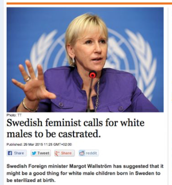SELF-HATING SUICIDAL Swedish feminazis want to ban political parties and organizations that oppose mass Muslim migration